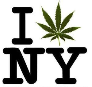 ny-weed_0